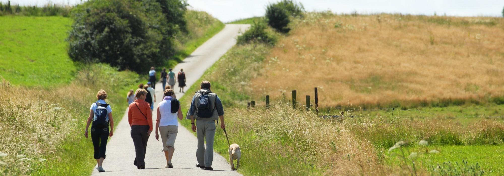 Groupe sur la route dans les champs de blé du Condroz ( PH Roland)